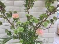 春のお花(米田)